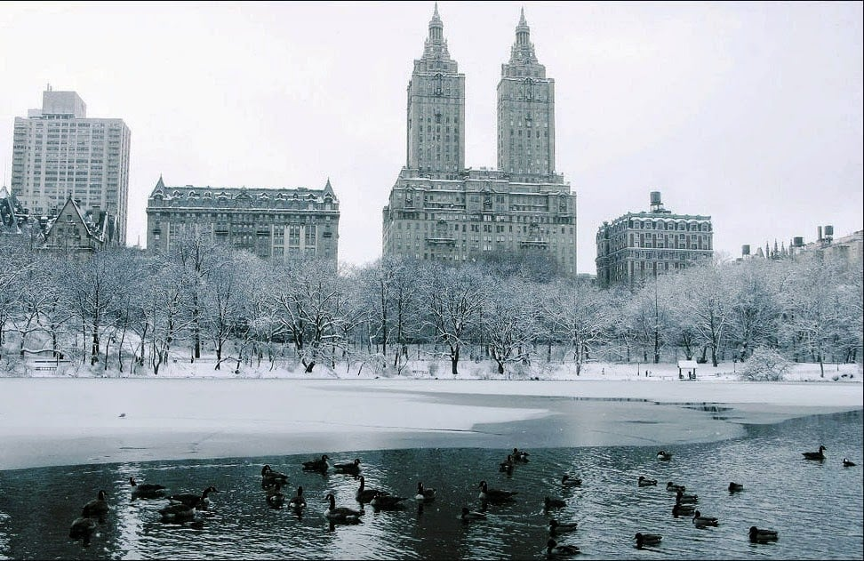 Inverno em NY