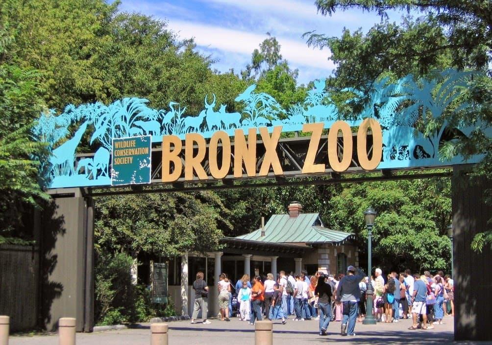 Zoológico do Bronx em Nova York