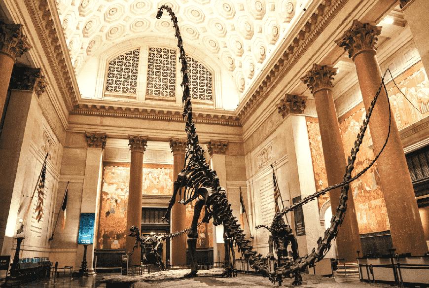 Como é o Museu de História Natural em Nova York?