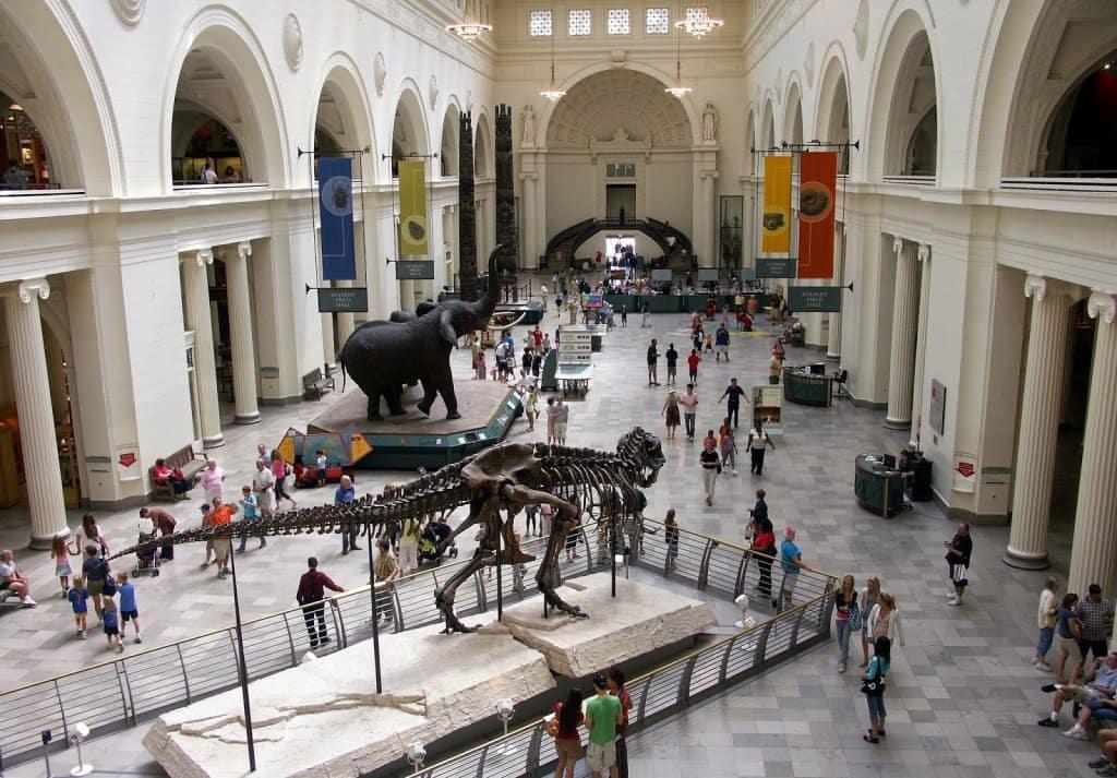 Atrações e acervo do Field Museum
