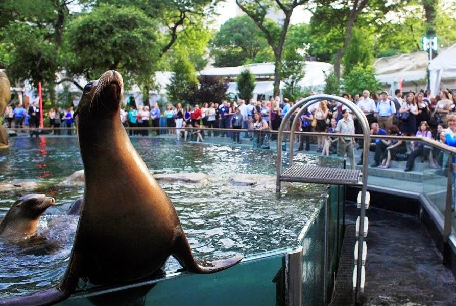 Zoológicos de Nova York com crianças