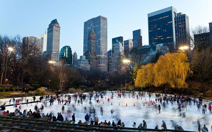 Inverno em Nova York: Central Park