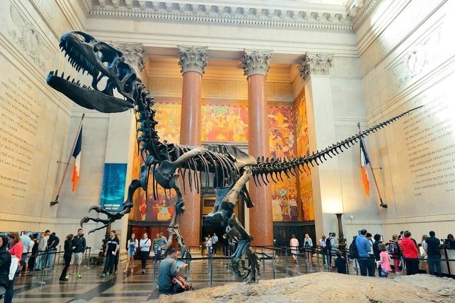 American Museum of Natural History em Nova York