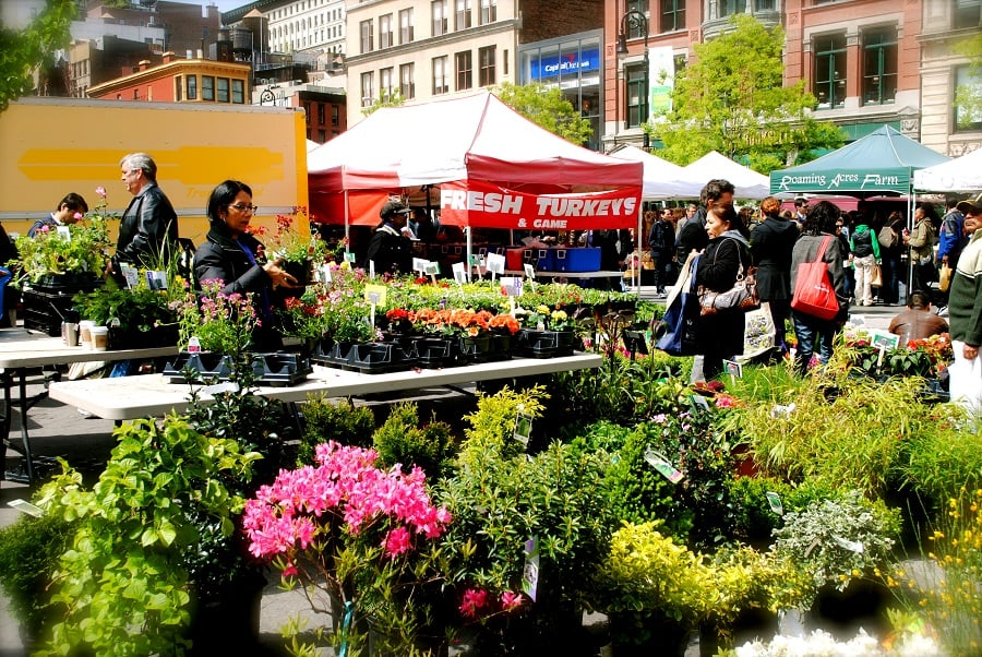 Union Square Greenmarket em Nova York
