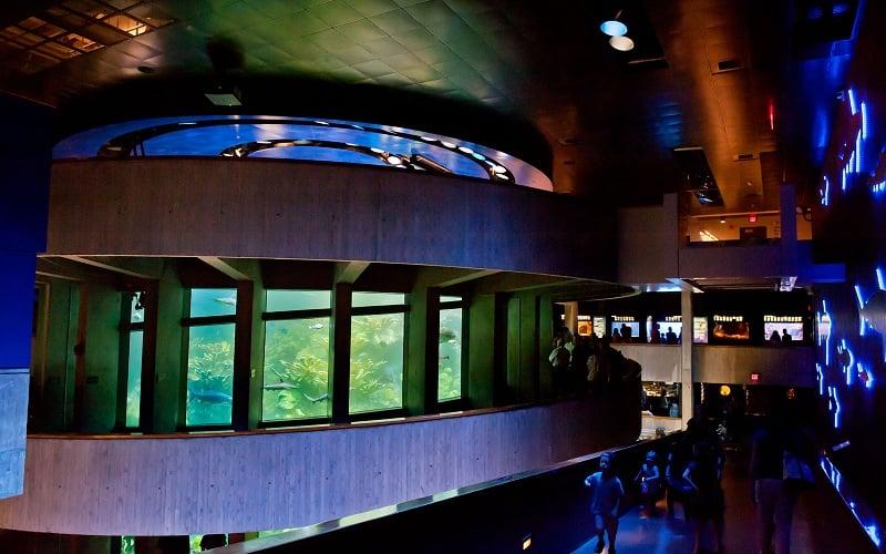 New England Aquarium em Boston