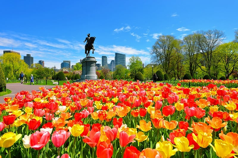 Passeios em Boston