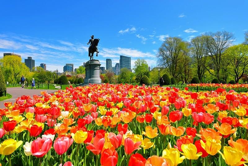Clima e temperatura em Boston