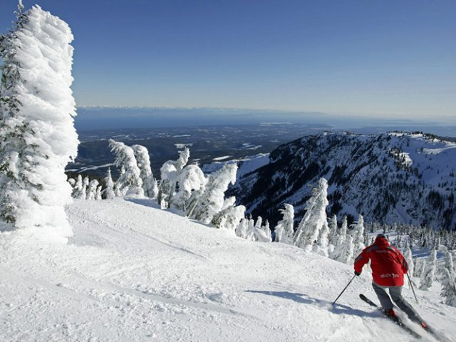 O que fazer com neve em Washington